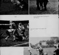 football-d_0