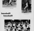 baseball-3_0