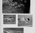 swimming-2_0