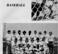 baseball-1_0
