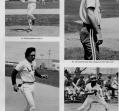 baseball-5_0