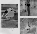 swimming-3_0