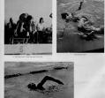 swimming-4_0