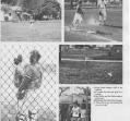 baseball-04_0