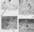 water-polo-01_0